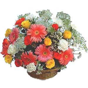 Sepet içerisinde karisik kir çiçekleri  Ankara lalegül çiçek siparişi sitesi
