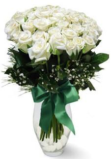 19 adet essiz kalitede beyaz gül  Ankara macunköy çiçekçiler