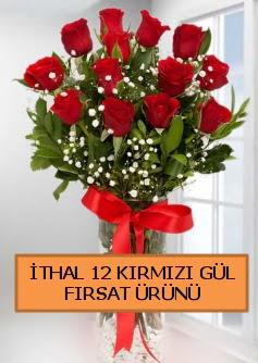 İthal kırmızı 12 adet kaliteli gül  Ankara demetevler ucuz çiçek gönder
