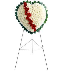 Ankara şentepe internetten çiçek siparişi  kalbimin tek sahibisin benim