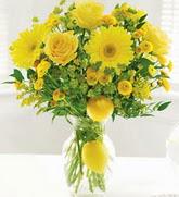 Ankara bilkent çiçek online çiçek siparişi  cam yada mika Vazoda sari gül ve çiçekler