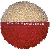 arma anitkabire - mozele için  Ankara ostim çiçek gönderme sitemiz güvenlidir