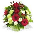 karanfil gerbera ve güller - düsünenelere özel -  Ankara sincan çiçek gönderme