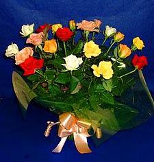 Ankara ivedik hediye çiçek yolla  13 adet karisik renkli güller