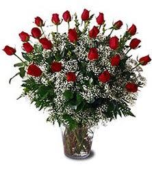 Ankara lalegül çiçek siparişi sitesi  Cam yada mika vazo içerisinde 15 adet kirmizi güller,cipsofi