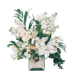 Ankara şentepe internetten çiçek siparişi  sadece beyazlardan olusmus mevsim cam yada mika tanzim