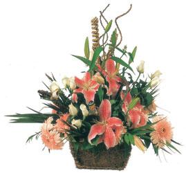 Ankara etimesgut çiçek , çiçekçi , çiçekçilik  Mevsimsel Çok özel sevdiklerinize çiçek tanzimi