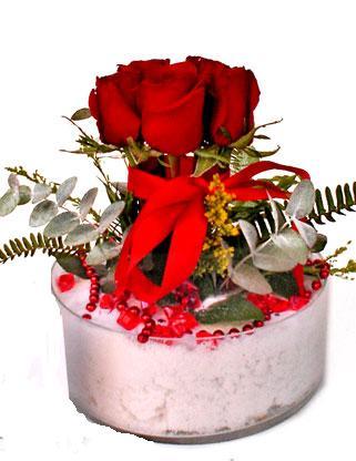 Ankara bilkent çiçek online çiçek siparişi  SEVMEK GÜZEL DIYENLERE 7 ADET GÜL