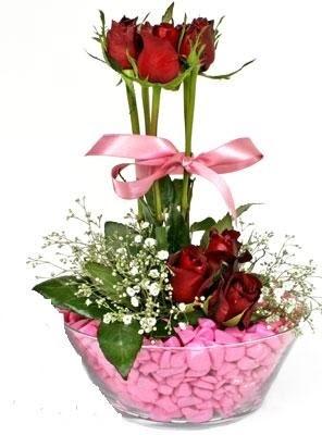 Ankara yenimahalle İnternetten çiçek siparişi  SEVIYORUM DIYENLER 7 kirmizi gül tanzim