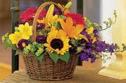 Ankara etimesgut çiçek , çiçekçi , çiçekçilik  Karisik mevsim çiçeklerinden sepet tanzimi