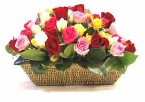 Ankara gazi mahallesi çiçekçi mağazası  karisik 15 adet gül sepet modeli