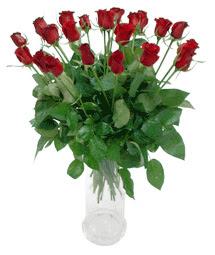Ankara eryaman çiçekçi telefonları  11 adet kimizi gülün ihtisami cam yada mika vazo modeli