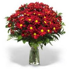 Ankara batıkent çiçek yolla  Kir çiçekleri cam yada mika vazo içinde