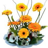camda gerbera ve mis kokulu kir çiçekleri  Ankara eryaman çiçekçi telefonları