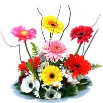 Ankara ivedik hediye çiçek yolla  camda gerbera ve mis kokulu kir çiçekleri
