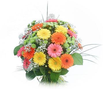 13 adet gerbera çiçegi buketi  Ankara yenimahalle online çiçek gönderme sipariş