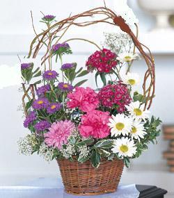 Görsel kir çiçegi sepeti mis kokulu  Ankara lalegül çiçek siparişi sitesi