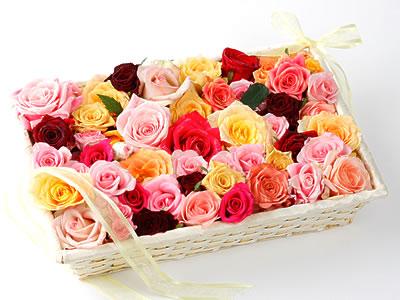 33 adet renkli gül sepet içerisinde  Ankara yenimahalle online çiçek gönderme sipariş