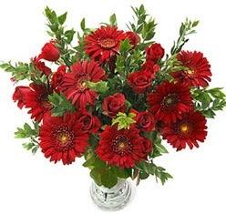 5 adet kirmizi gül 5 adet gerbera aranjmani  Ankara ivedik hediye çiçek yolla