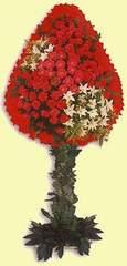 Ankara sincan çiçek gönderme  dügün açilis çiçekleri  Ankara bilkent çiçek online çiçek siparişi