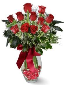9 adet gül  Ankara karacakaya internetten çiçek satışı  kirmizi gül
