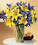 Ankara anneler günü çiçek yolla  Lilyum ve mevsim  çiçegi özel