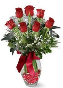 Ankara şentepe internetten çiçek siparişi  7 adet kirmizi gül cam vazo yada mika vazoda