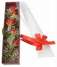 kutu içinde 5 adet kirmizi gül  Ankara şentepe internetten çiçek siparişi