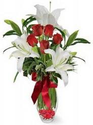 Ankara varlık mahallesi çiçek siparişi vermek  5 adet kirmizi gül ve 3 kandil kazablanka