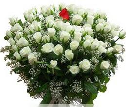 Ankara karacakaya internetten çiçek satışı  100 adet beyaz 1 adet kirmizi gül buketi