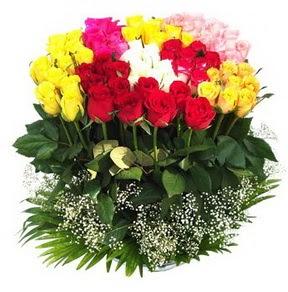 Ankara hacettepe çiçek mağazası , çiçekçi adresleri  51 adet renkli güllerden aranjman tanzimi