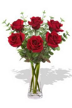 Ankara gazi mahallesi çiçekçi mağazası  6 kırmızı gül vazosu