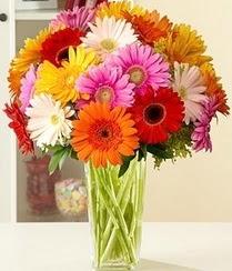 Ankara ümitköy çiçek servisi , çiçekçi adresleri  15 adet gerbera çiçek vazosu