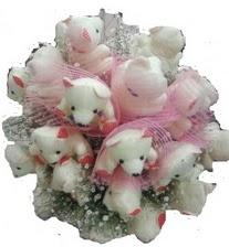 Ankara lalegül çiçek siparişi sitesi  15 li ayı buketi