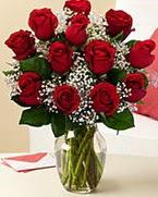 Sevgilime hediye 9 adet 1.ci kalite gül  Ankara anneler günü çiçek yolla