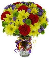 En güzel hediye karışık mevsim çiçeği  Ankara ivedik hediye çiçek yolla