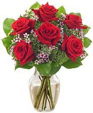 Kız arkadaşıma hediye 6 kırmızı gül  Ankara şentepe internetten çiçek siparişi
