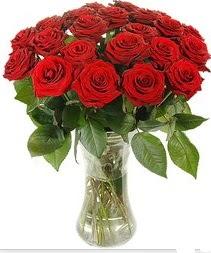Ankara hacettepe çiçek mağazası , çiçekçi adresleri  Vazoda 15 adet kırmızı gül tanzimi