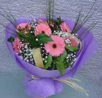 Ankara ostim çiçek gönderme sitemiz güvenlidir  9 adet gerbera güzel çiçegi