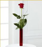 Vazo içerisinde 1 adet kırmızı gül  Ankara şentepe internetten çiçek siparişi