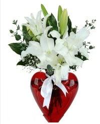 Kalp vazoda 3 kazablanka çiçeği  Ankara yenimahalle İnternetten çiçek siparişi
