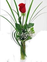 Cam içerisinde 1 kırmızı gül  Ankara ostim çiçek gönderme sitemiz güvenlidir