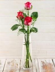 Cam içerisinde 3 kırmızı gül  Ankara gimat çiçek satışı