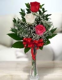 Camda 2 kırmızı 1 beyaz gül  Ankara demetevler ucuz çiçek gönder