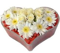 Kalp içerisinde 7 beyaz gül ve papatyalar  Ankara karacakaya internetten çiçek satışı