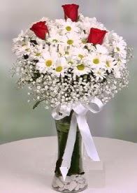 Cam içinde papatyalar 3 adet kırmızı gül  Ankara anneler günü çiçek yolla
