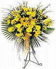 Ankara yurtiçi ve yurtdışı çiçek siparişi  Sari kazablanka Ferforje