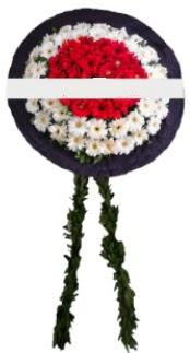 mozele çiçeği  Ankara çayyolu hediye sevgilime hediye çiçek