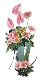 Ankara kardelen güvenli kaliteli hızlı çiçek  Pembe Antoryum Harikalar Rüyasi