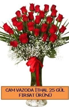 Cam vazoda ithal 1. kalite 25 gül  Ankara karacakaya internetten çiçek satışı